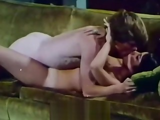 Young Couple Fucks handy House Party (1970s Vintage)